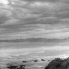 Sea Shore Two Black and White by Glen Johnson