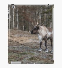 Caribou iPad Case/Skin