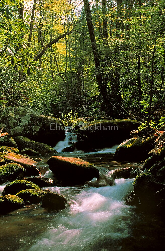 STREAM,ROARING FORK by Chuck Wickham