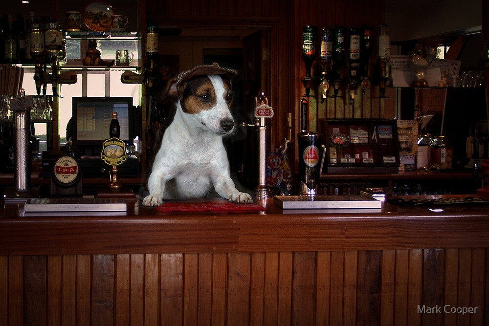 You want Hair of the Dog? by Mark Cooper
