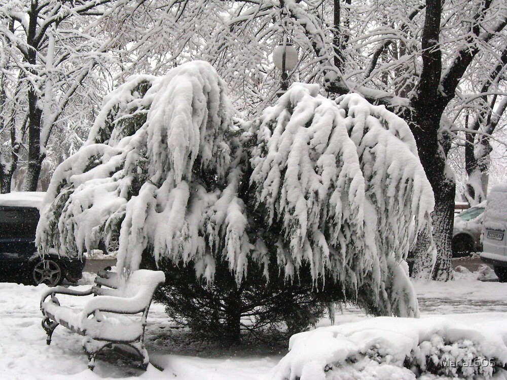 Snow captured by Maria1606