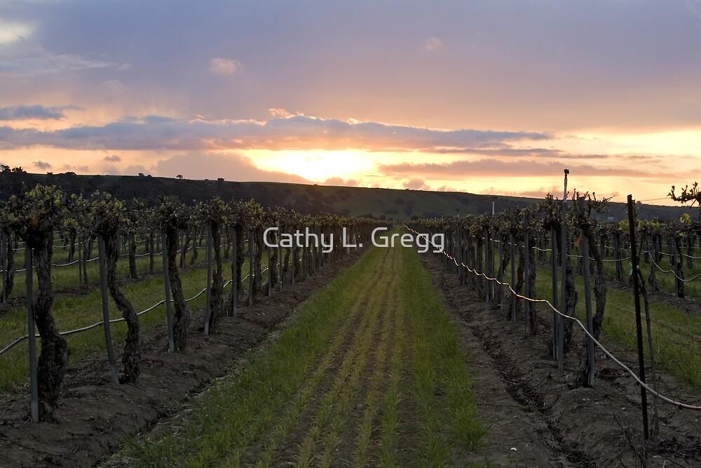 Vineyard Aglow by Cathy L. Gregg