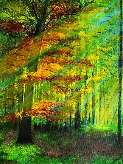 Sunlit trees by maggie326