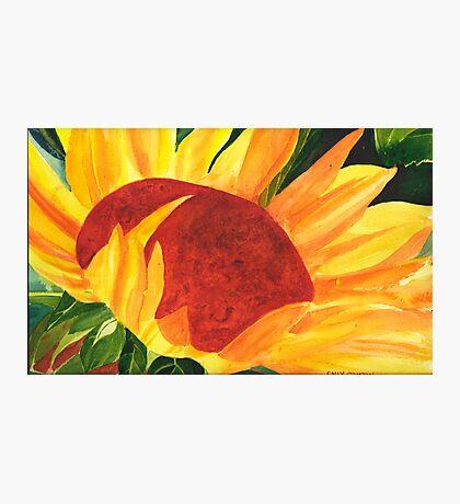 Summer Sun Photographic Print