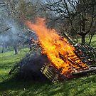 Spring Bonfire  VRS2 by vivendulies