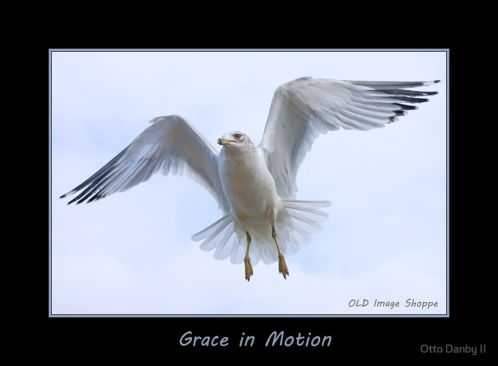 Grace in Motion by Otto Danby II