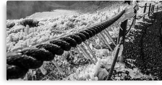 Iceland Icy Rope Fence  by Joel Brown