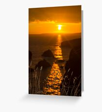 beautiful sunset over the coastal rocks with wild highl grass Greeting Card