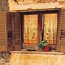 THE OLD SHUTTERS by Dawn1951