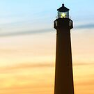 Guiding Light by Sharon Woerner