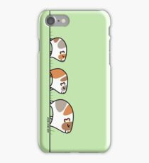 Mother Guinea-pig with Babies iPhone Case/Skin