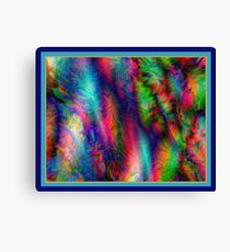 Do You See What I See Canvas Print
