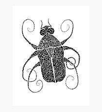 Doodle Bug 2 Photographic Print