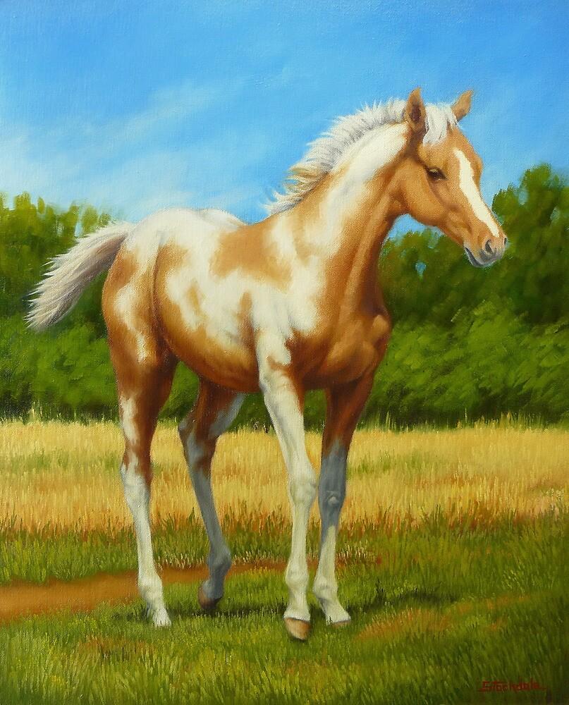 Pretty Baby-Paint Foal by Margaret Stockdale