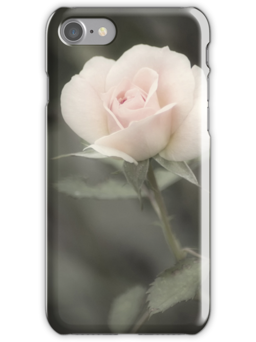 Soft Perfection iPhone case by KBritt