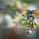 Inquisitive Dragonfly by Dennis Stewart