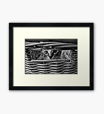 When the going gets tough... Framed Print