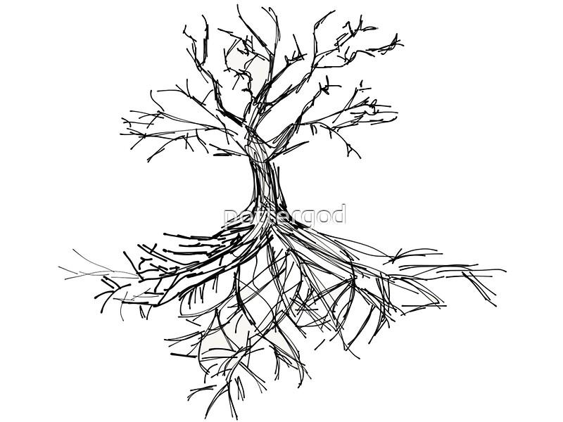 u0026quot tree sketch with roots u0026quot  art prints by pottergod