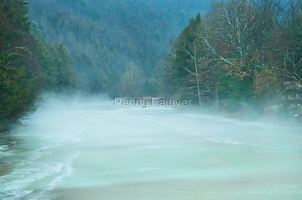 Foggy day in the valley by Penny Fawver