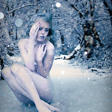 The Snow Queen by AndrewGordon