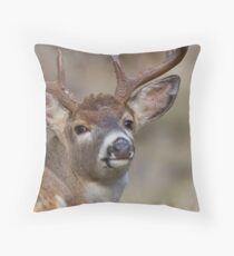 "Whitetail Buck Portrait, ""over the shoulder"" Throw Pillow"