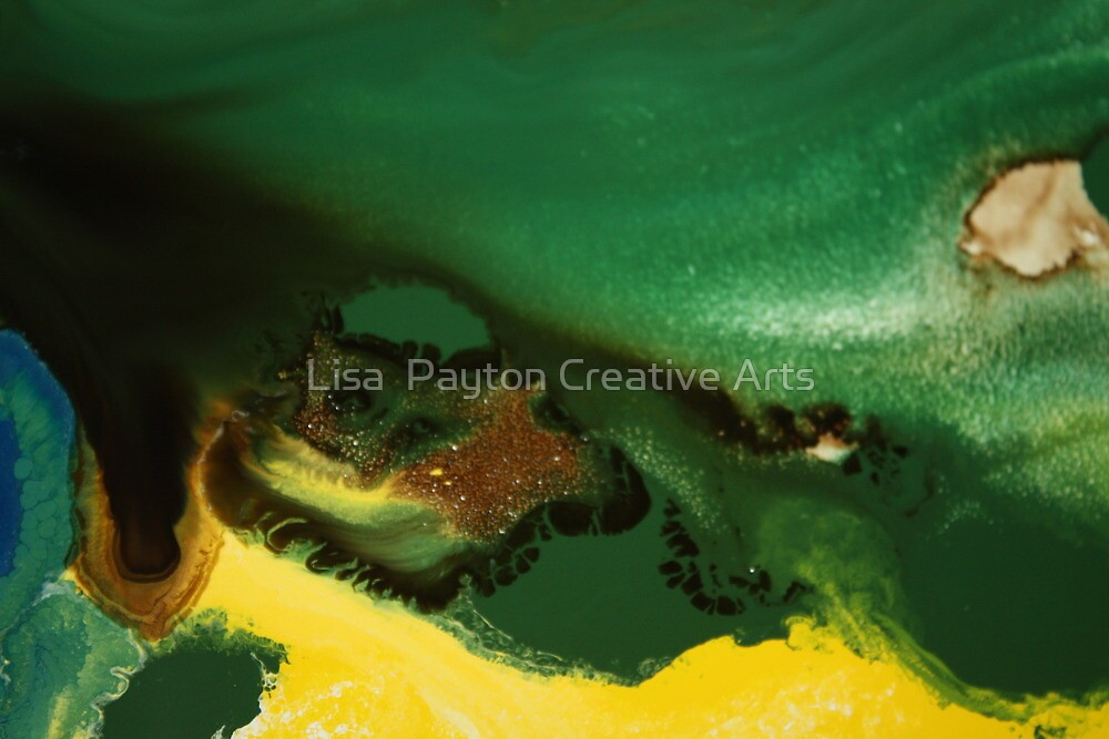Sand and Trees by Lisa  Payton