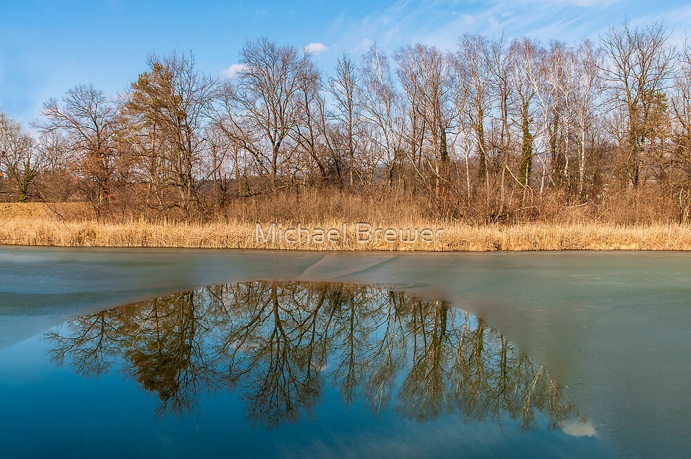 Reflections on an icy pond by Michael Brewer