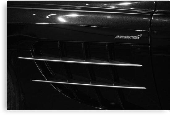 Trim SLR by John Schneider