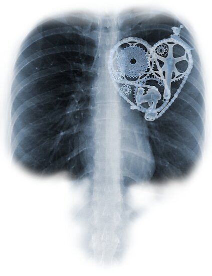 BiKE LOVE X Ray bicycle heart components by SFDesignstudio
