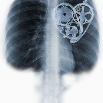 BiKE LOVE X Ray componentes del corazón de la bicicleta de SFDesignstudio