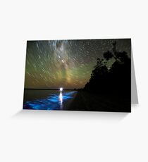Bioluminescence in the Gippsland Lakes Greeting Card