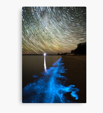 Bioluminescence in the Gippsland Lakes Canvas Print