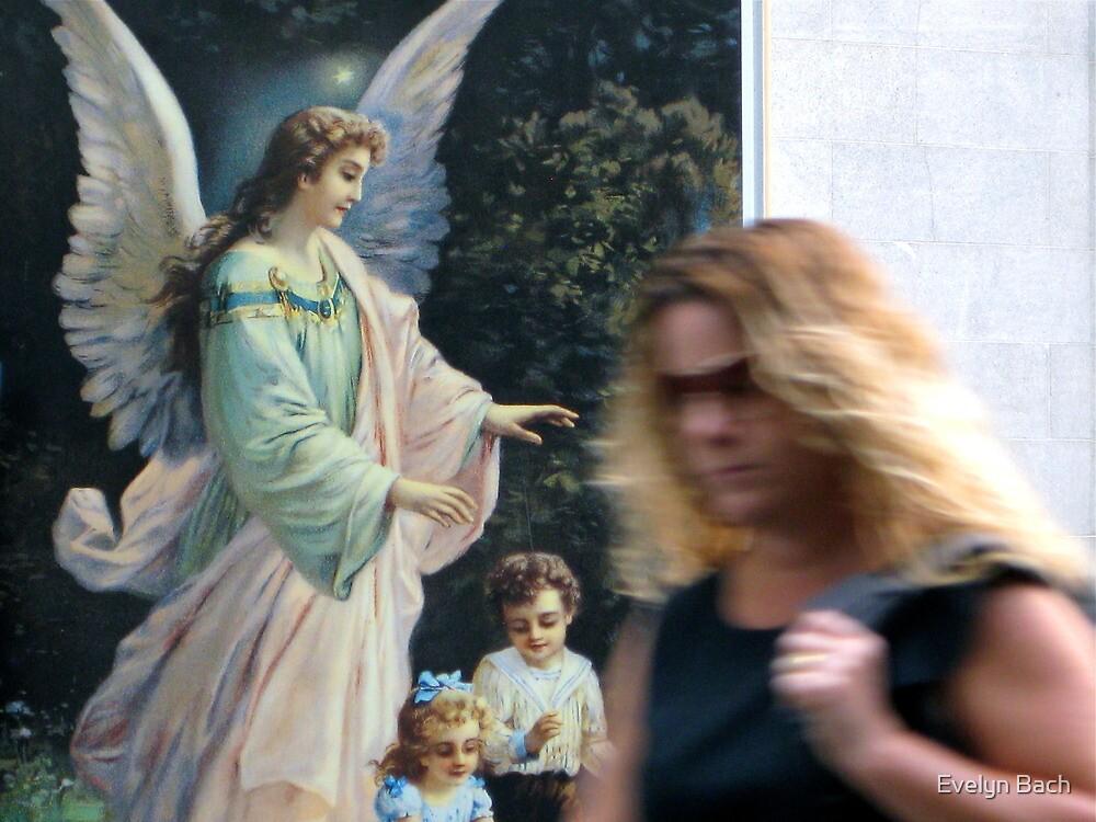21/1 urban angel by Evelyn Bach
