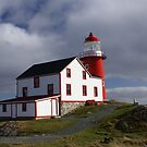 Ferryland Head Lighthouse by Jean Knowles
