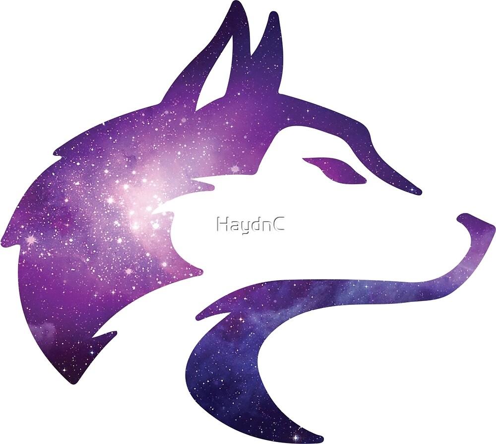 Wolf galaxy. By haydnc redbubble