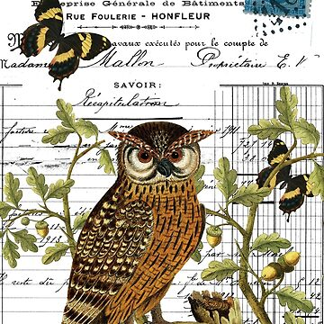 Owl on a branch digital collage with antique images by Frogwah