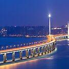 Freeway at night in Hong Kong by kawing921