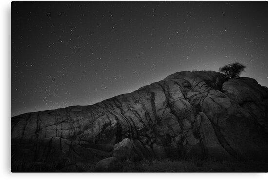 Cut The Night by Bob Larson