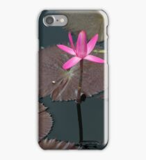 Pink Lily Pad iPhone Case/Skin