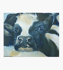You Can Lean on Me Too --- Cow portrait Photographic Print