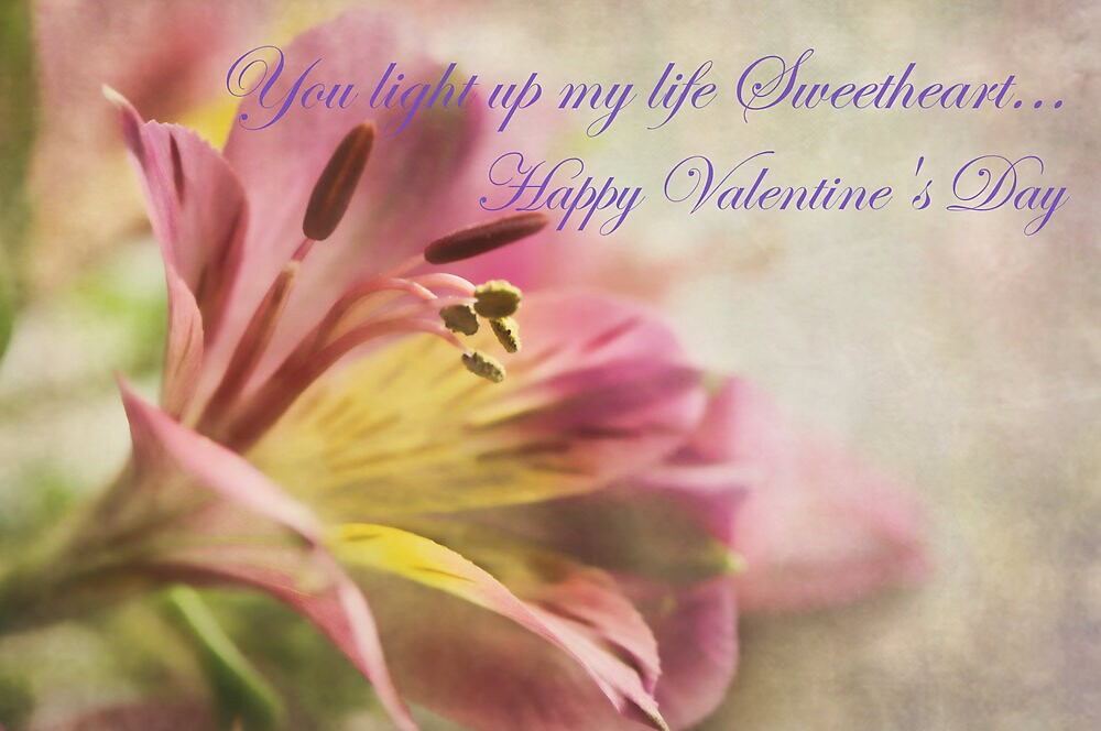 Valentine Card by jules572