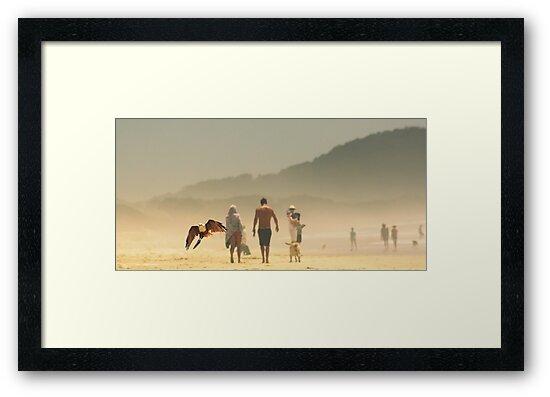 beach life  by Trish Threlfall