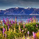 Lake Hawea by Robyn Carter