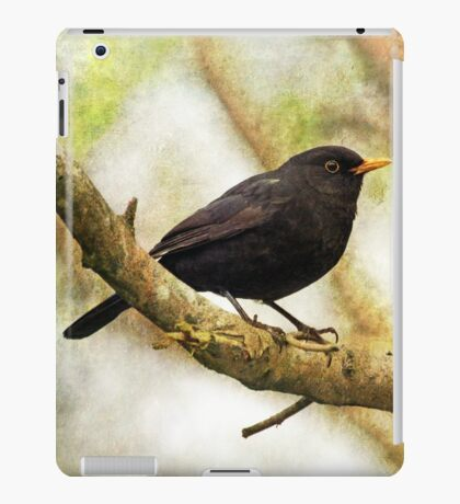 Blackbird iPad Case/Skin