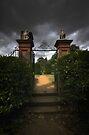 The Gate by Nigel Bangert