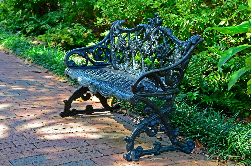 Back Yard Bench by TJ Baccari Photography