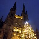 Bordeaux Christmas tree & cathedral by graceloves
