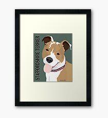 Staffordshire Terrier Framed Print