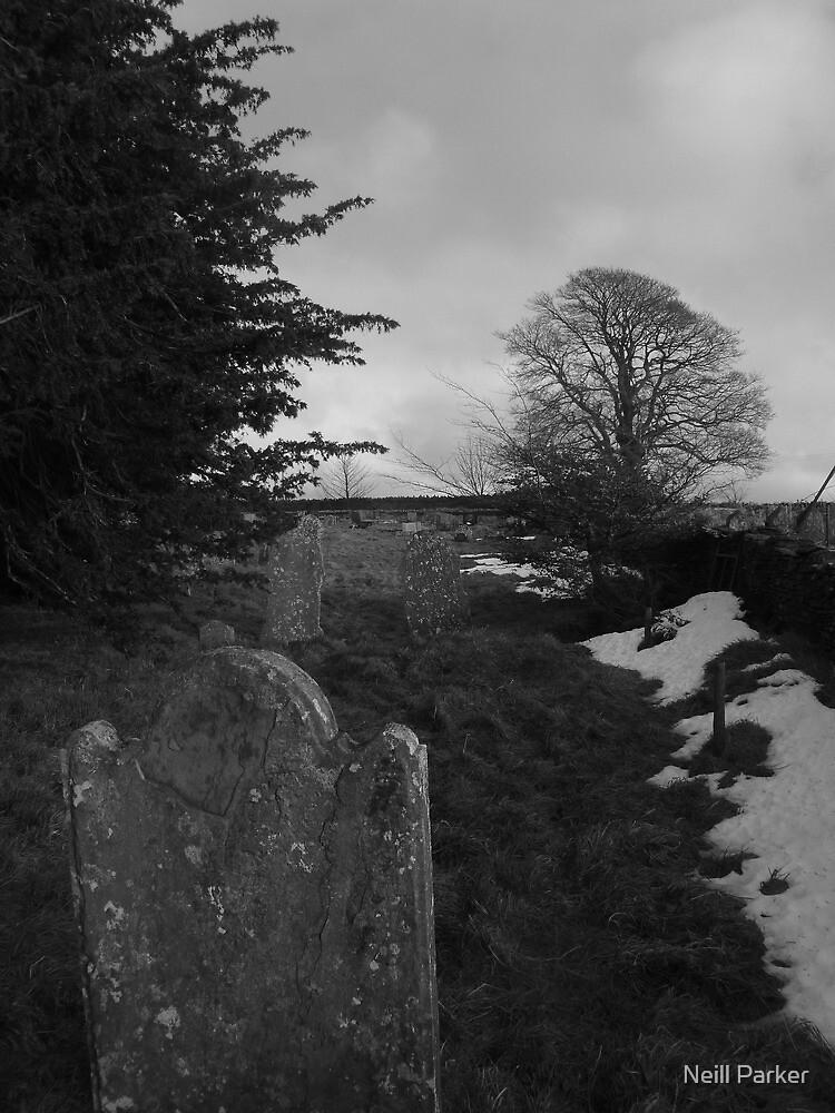 St Tudur's Graveyard by Neill Parker
