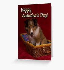 Valentine's Day Sheltie Puppy Greeting Card
